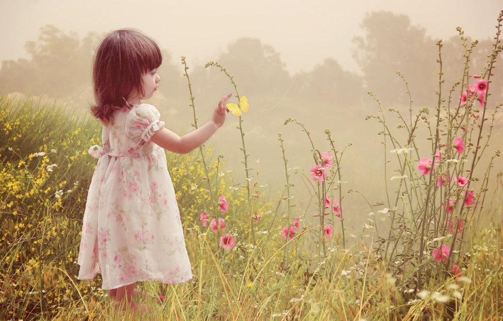 summer_flowers_by_ralbin-d5x0svm
